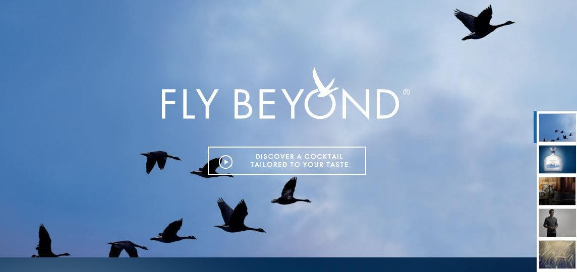 Grey Goose's landing page is simple and visual