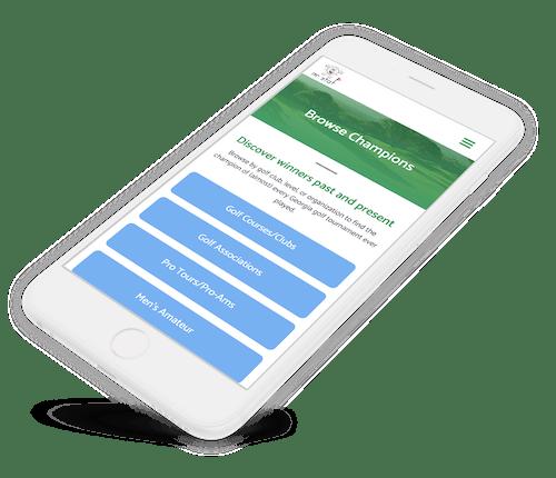 Web sitesearch feature